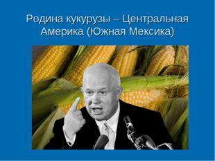 Родина кукурузы – Центральная Америка (Южная Мексика)