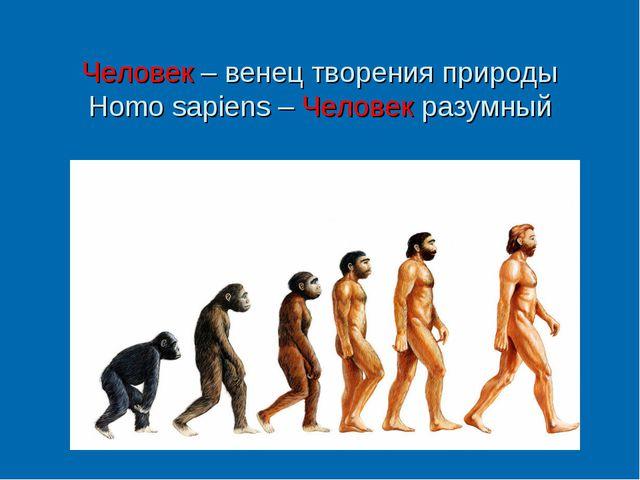 Человек – венец творения природы Homo sapiens – Человек разумный