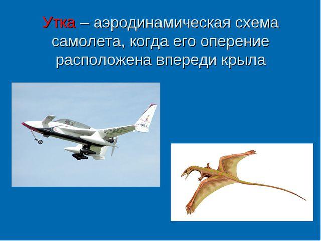 Утка – аэродинамическая схема самолета, когда его оперение расположена вперед...