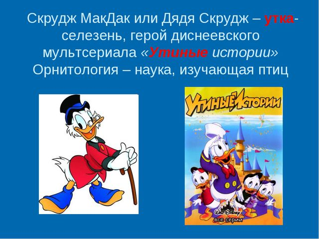 Скрудж МакДак или Дядя Скрудж – утка-селезень, герой диснеевского мультсериа...