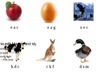 e a c e a g o e c h d c c k f d s m