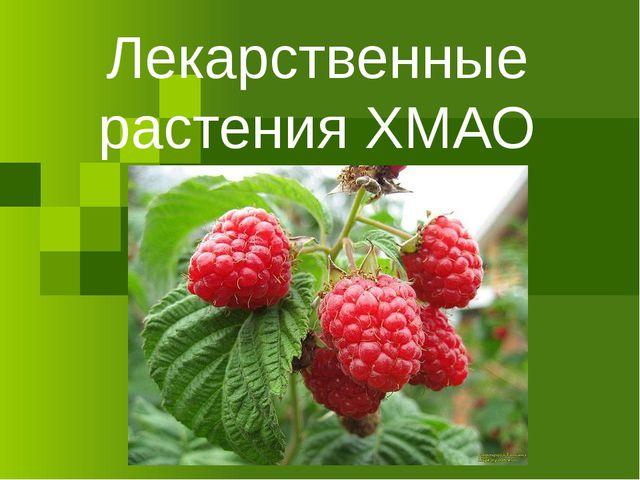 Лекарственные растения ХМАО