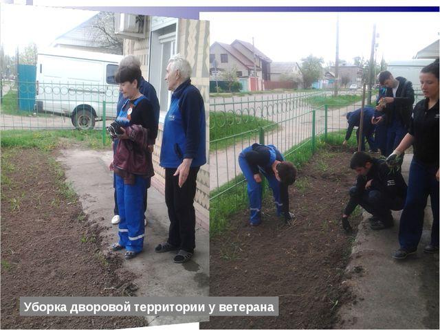 Уборка дворовой территории у ветерана