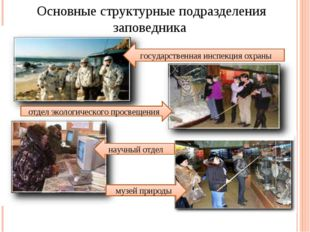 Основные структурные подразделения заповедника государственная инспекция охра