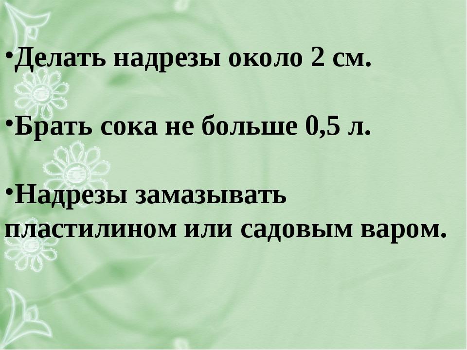 Делать надрезы около 2 см. Брать сока не больше 0,5 л. Надрезы замазывать пл...