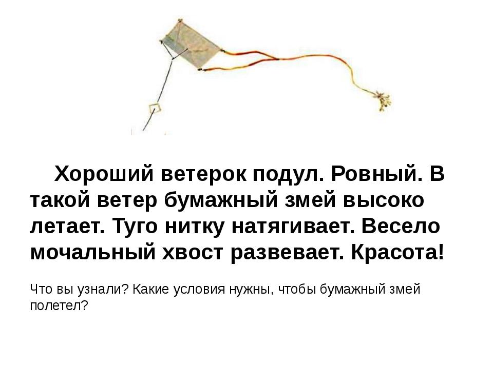 Хороший ветерок подул. Ровный. В такой ветер бумажный змей высоко летает. Ту...