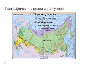 Географическое положение тундры