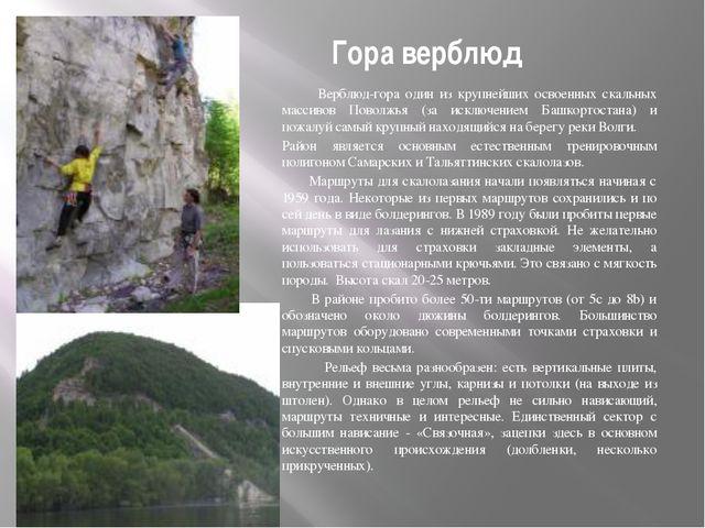 Гора верблюд Верблюд-гора один из крупнейших освоенных скальных массивов Пово...