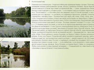 Растительный мир Типичная лесостепная река. Открытая пойма реки преимуществен