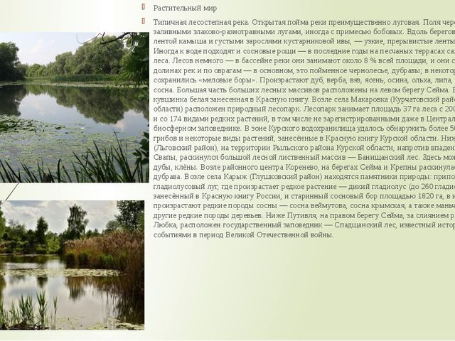 Растительный мир Типичная лесостепная река. Открытая пойма реки преимуществен...