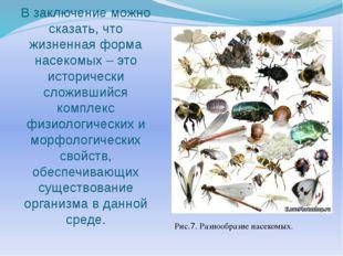 В заключение можно сказать, что жизненная форма насекомых – это исторически с