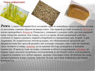 Рожьс самого основания Руси составляет одно из важнейших средств продовольст