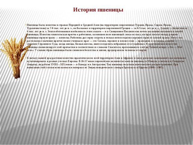 История пшеницы Пшеница была известна в странах Передней и Средней Азии (на т...