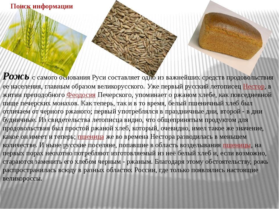 Рожьс самого основания Руси составляет одно из важнейших средств продовольст...