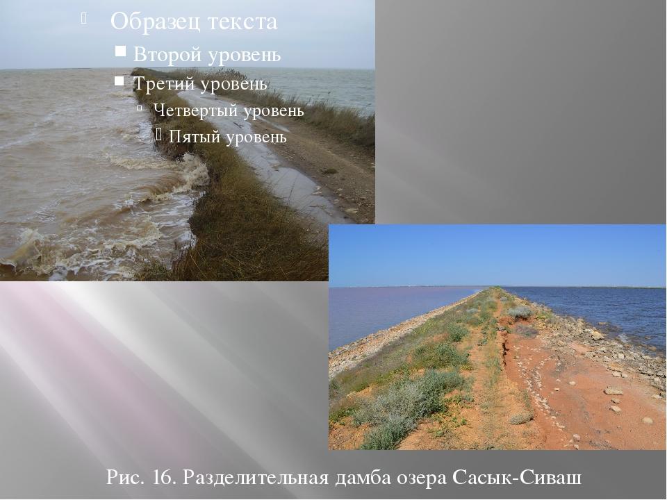 Рис. 16. Разделительная дамба озера Сасык-Сиваш