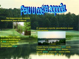 На территории города протекает река Воймега. В границах города находится озе