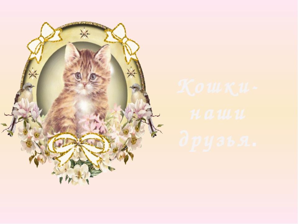 Кошки-наши друзья.