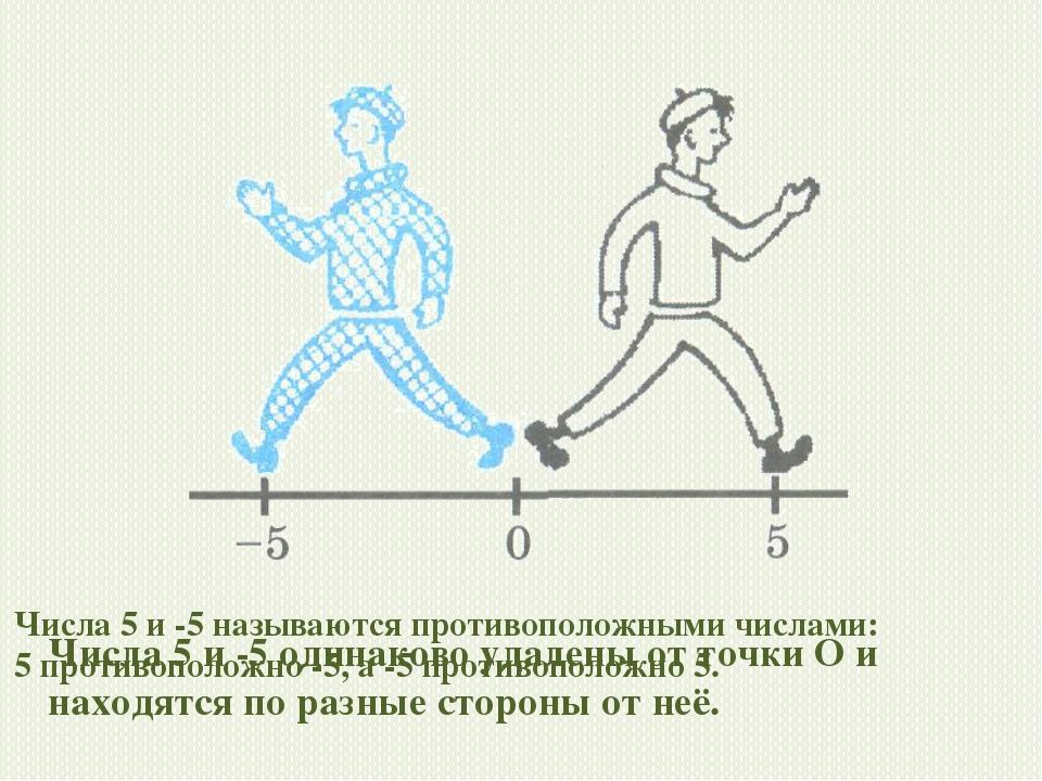 Числа 5 и -5 одинаково удалены от точки О и находятся по разные стороны от не...