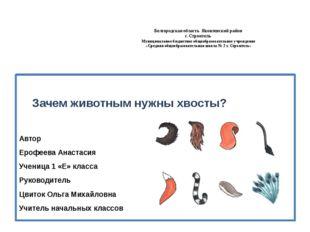 Белгородская область Яковлевский район г. Строитель Муниципальное бюджетное