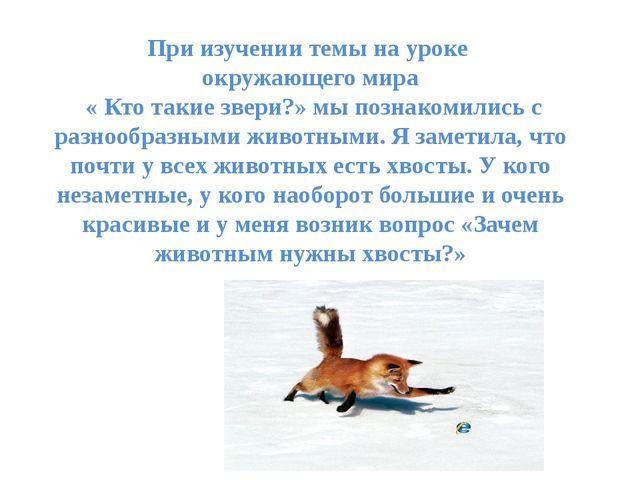 При изучении темы на уроке окружающего мира « Кто такие звери?» мы познакомил...