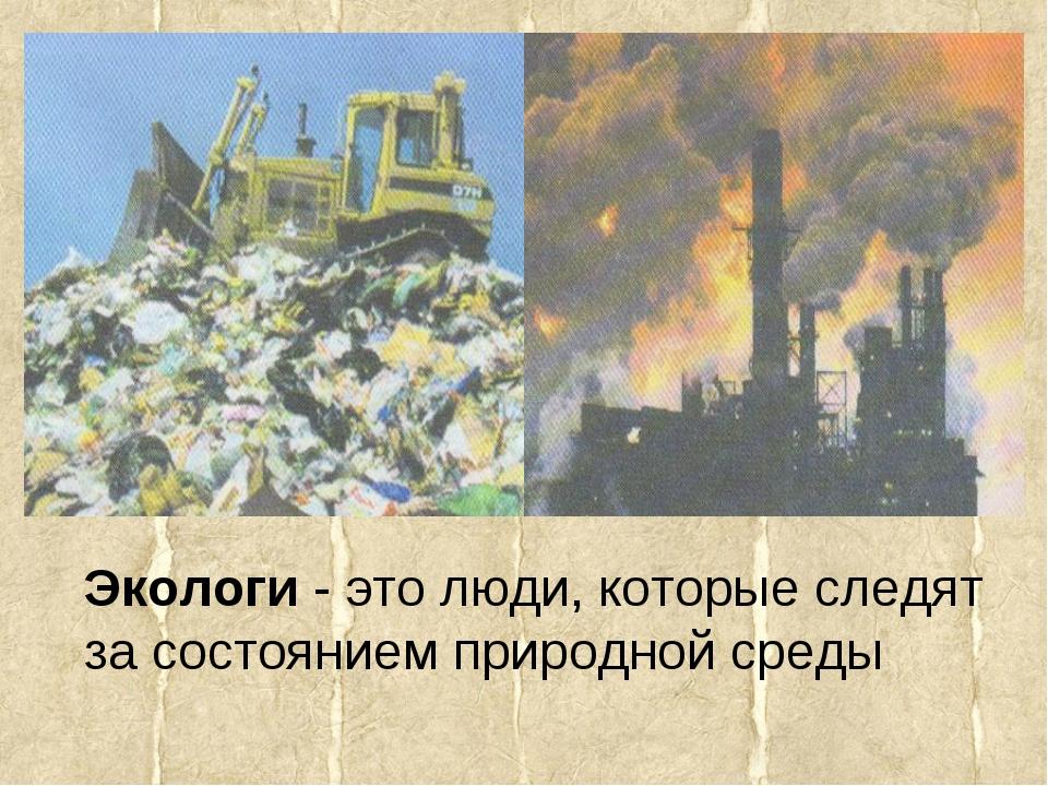Экологи - это люди, которые следят за состоянием природной среды