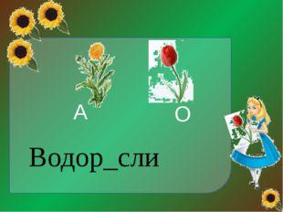 http://img1.liveinternet.ru/images/attach/c/1/62/888/62888390_1282164949_17.p