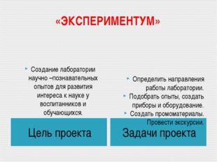 «ЭКСПЕРИМЕНТУМ» Цель проекта Задачи проекта Создание лаборатории научно –позн