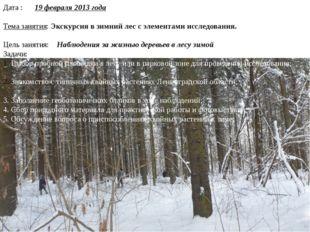 Дата : 19 февраля 2013 года Тема занятия: Экскурсия в зимний лес с элементами
