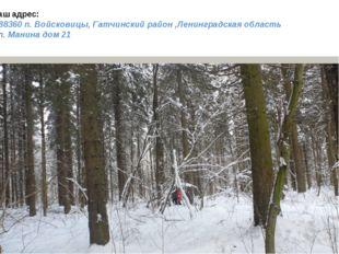 Наш адрес: 188360 п. Войсковицы, Гатчинский район ,Ленинградская область Пл.