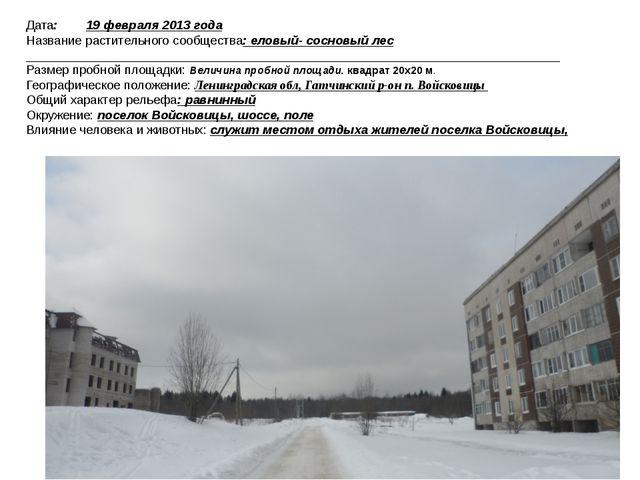 Дата: 19 февраля 2013 года Название растительного сообщества: еловый- сосновы...