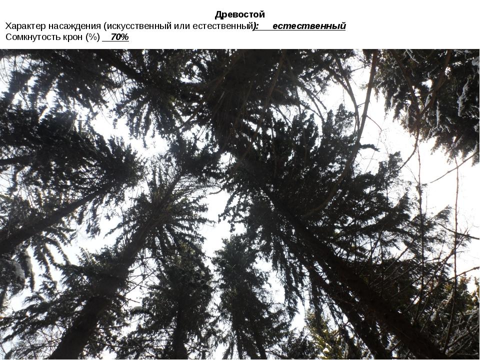 Древостой Характер насаждения (искусственный или естественный): естественный...