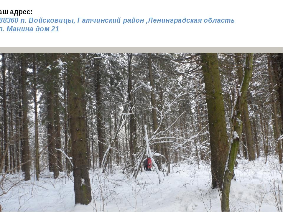 Наш адрес: 188360 п. Войсковицы, Гатчинский район ,Ленинградская область Пл....