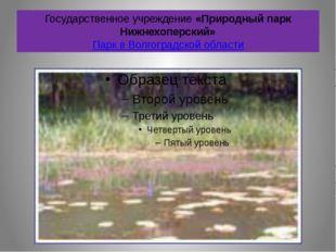 Государственное учреждение «Природный парк Нижнехоперский» Парк в Волгоградск