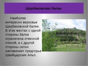 Щербаковская балка Наиболее интересно верховье Щербаковской балки. В этих мес