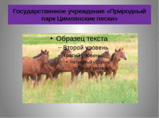 Государственное учреждение «Природный парк Цимлянские пески»