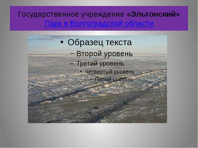Государственное учреждение «Эльтонский» Парк в Волгоградской области