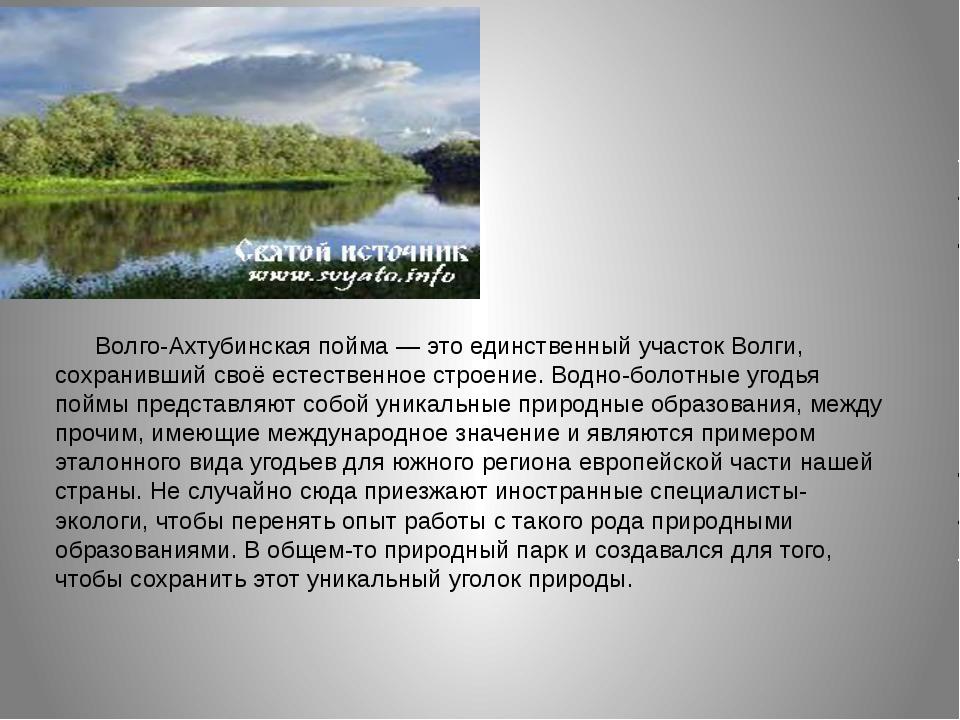 Волго-Ахтубинская пойма — это единственный участок Волги, сохранивший своё е...