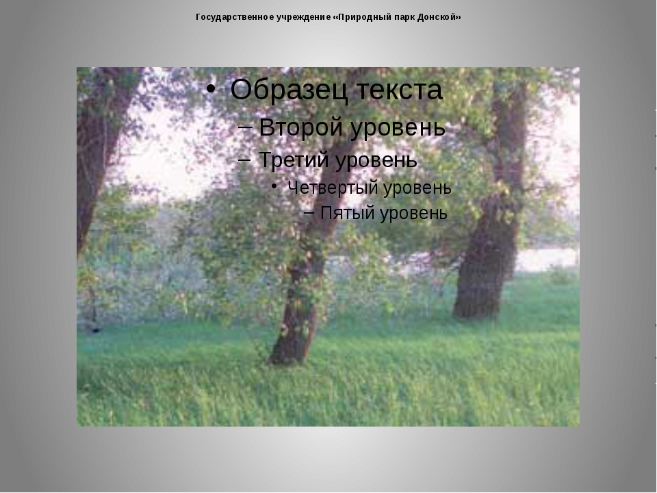 Государственное учреждение «Природный парк Донской»