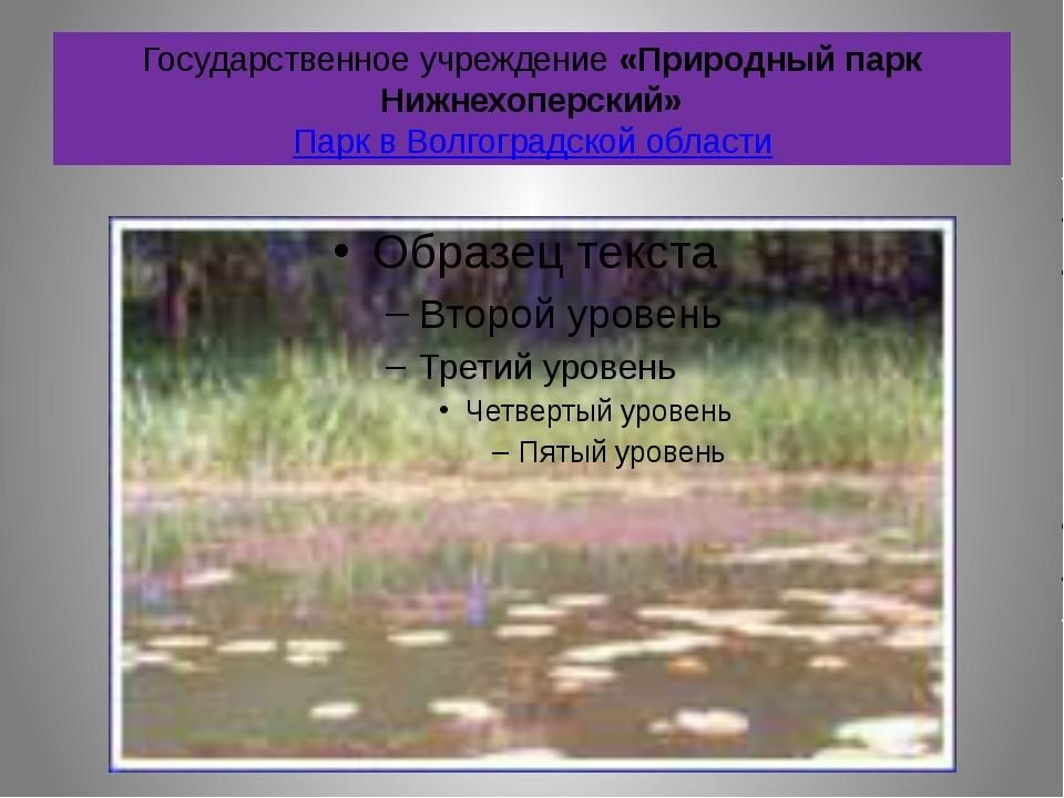 Государственное учреждение «Природный парк Нижнехоперский» Парк в Волгоградск...
