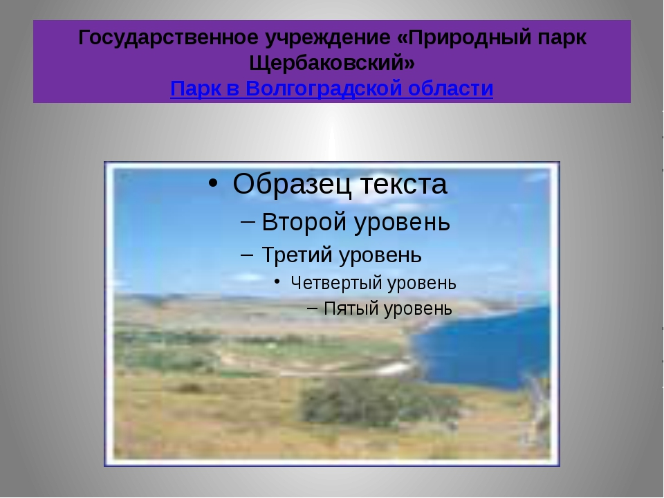 Государственное учреждение «Природный парк Щербаковский» Парк в Волгоградской...