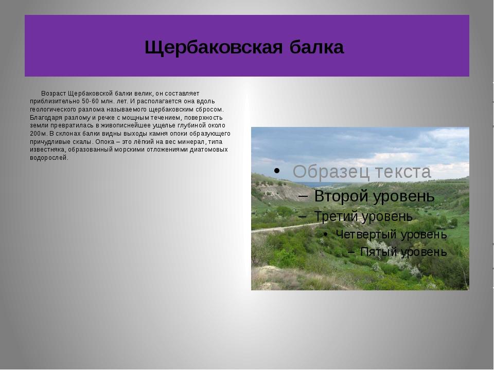 Щербаковская балка Возраст Щербаковской балки велик, он составляет приблизите...