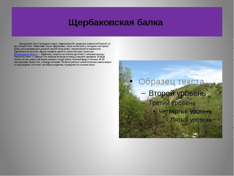 Щербаковская балка Центральная часть природного парка «Щербаковский» прорезан...