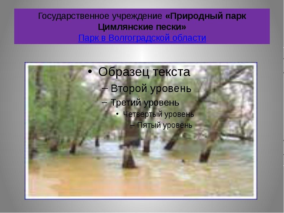 Государственное учреждение «Природный парк Цимлянские пески» Парк в Волгоград...