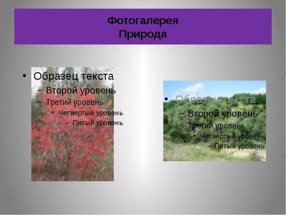 Фотогалерея Природа