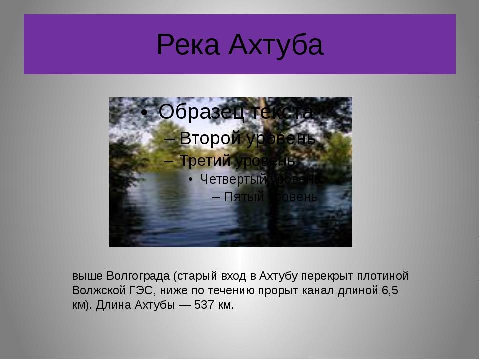 Река Ахтуба А́хтуба — левый рукав Волги, который отделяется от неё выше Волго...