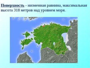 Поверхность - низменная равнина, максимальная высота 318 метров над уровнем м