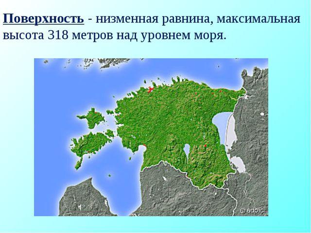 Поверхность - низменная равнина, максимальная высота 318 метров над уровнем м...