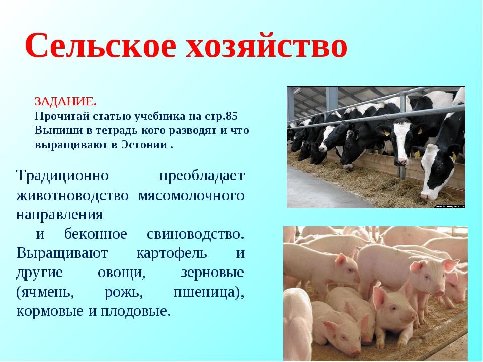 Сельское хозяйство Традиционно преобладает животноводство мясомолочного напра...