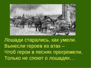 Лошади старались, как умели. Вынесли героев из атак – Чтоб герои в песнях п