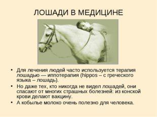 ЛОШАДИ В МЕДИЦИНЕ Для лечения людей часто используется терапия лошадью — иппо